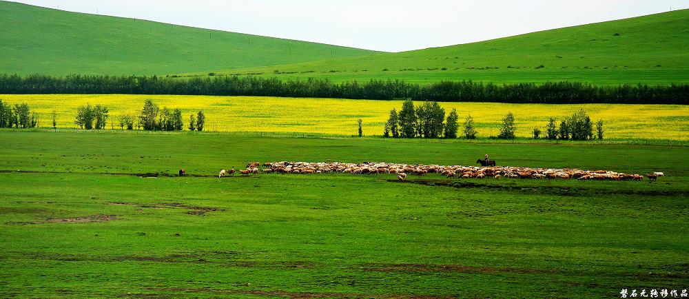 磐石无转移作品:额尔古纳草原