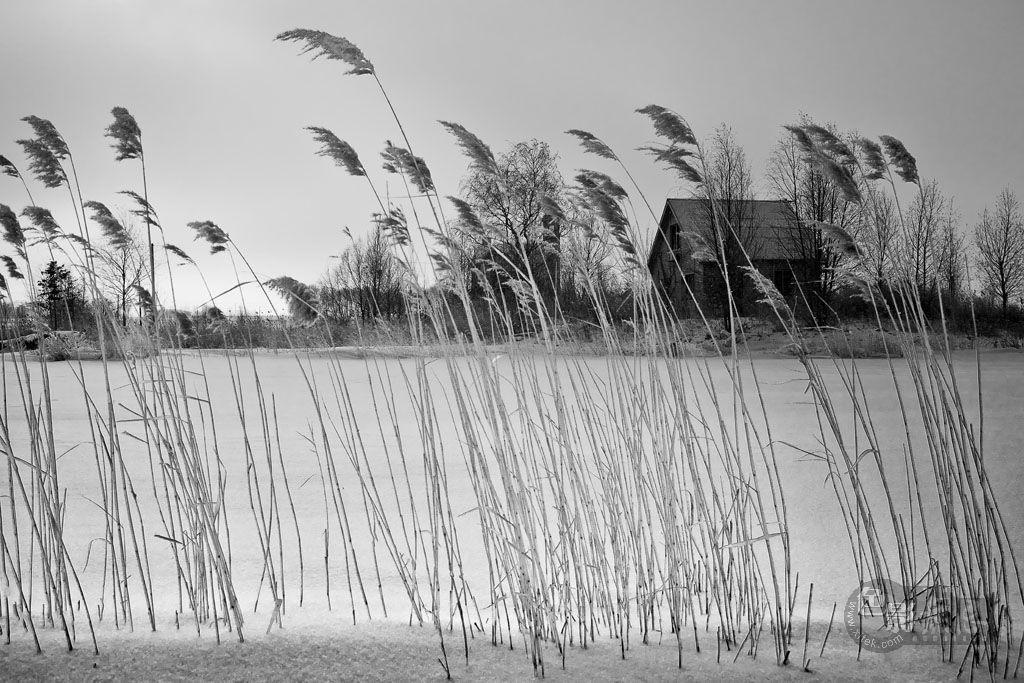 家乡的小河作品:冬天的日子