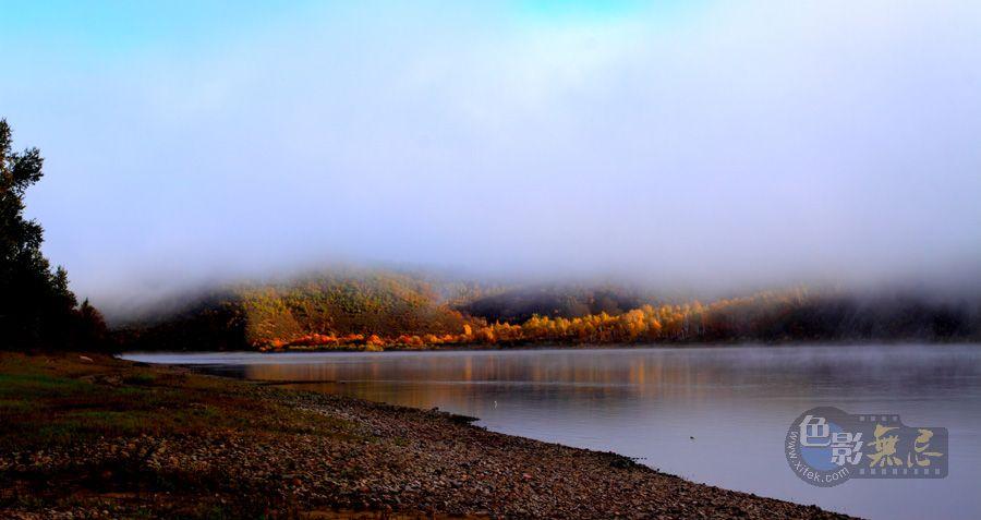 柞树林作品:晨雾-3