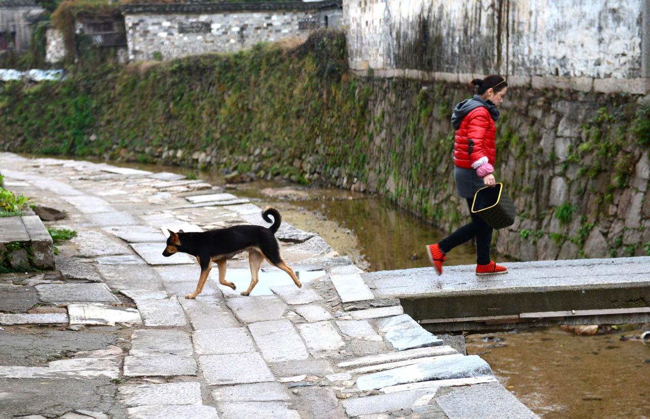 大色无忌作品:石桥 女人 和狗