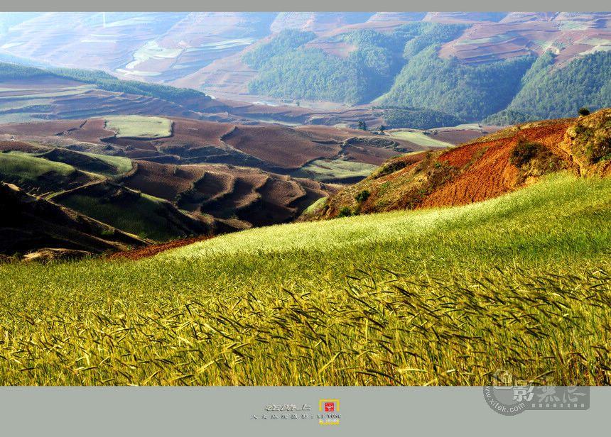 童心老男作品:在路上--红色荒漠之美丽背后的痛
