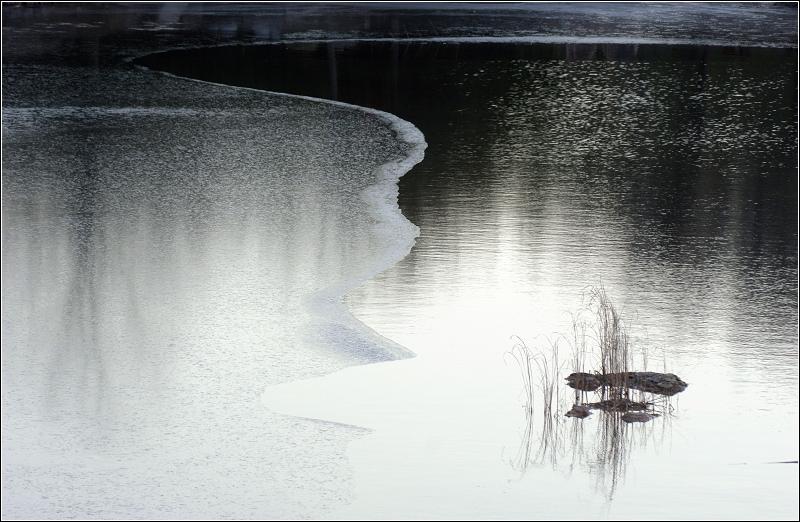 咸人作品:冬日水塘