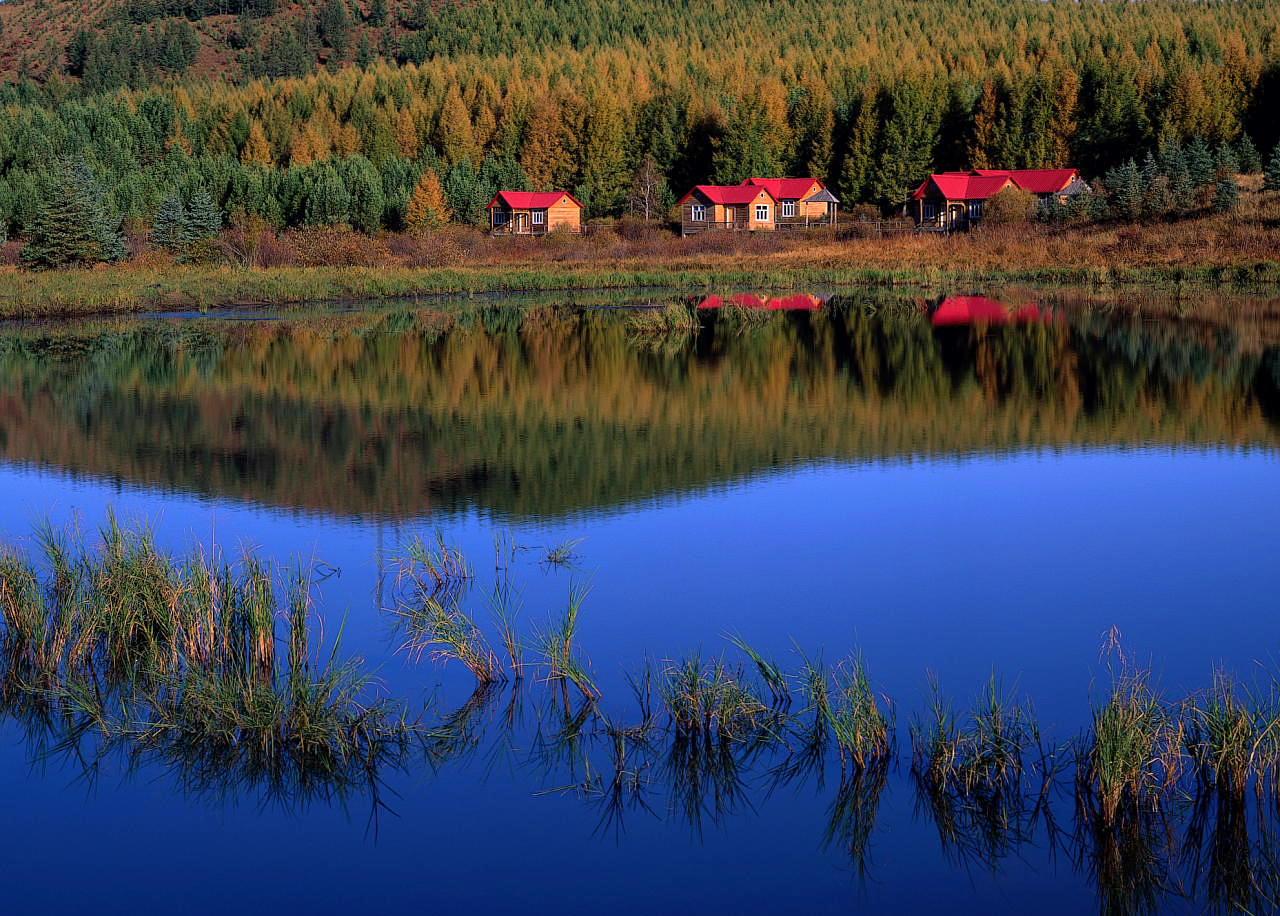 冰尘作品:湖边小屋