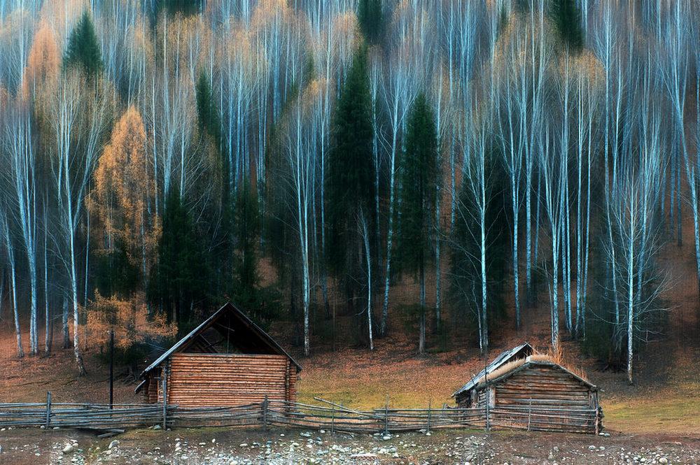 如风0758作品:诗意的秋