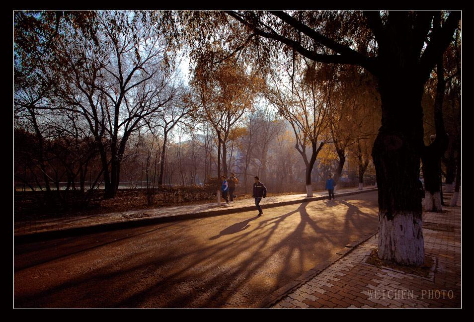 微尘1978作品:《大学时光》