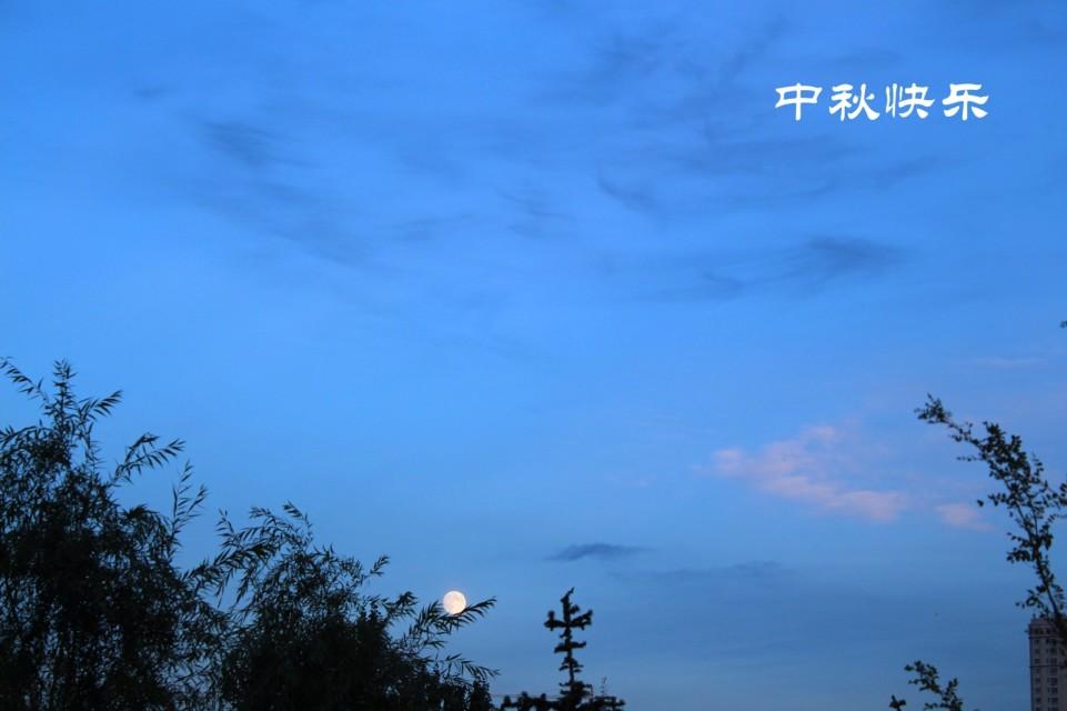 susu966作品:中秋快乐