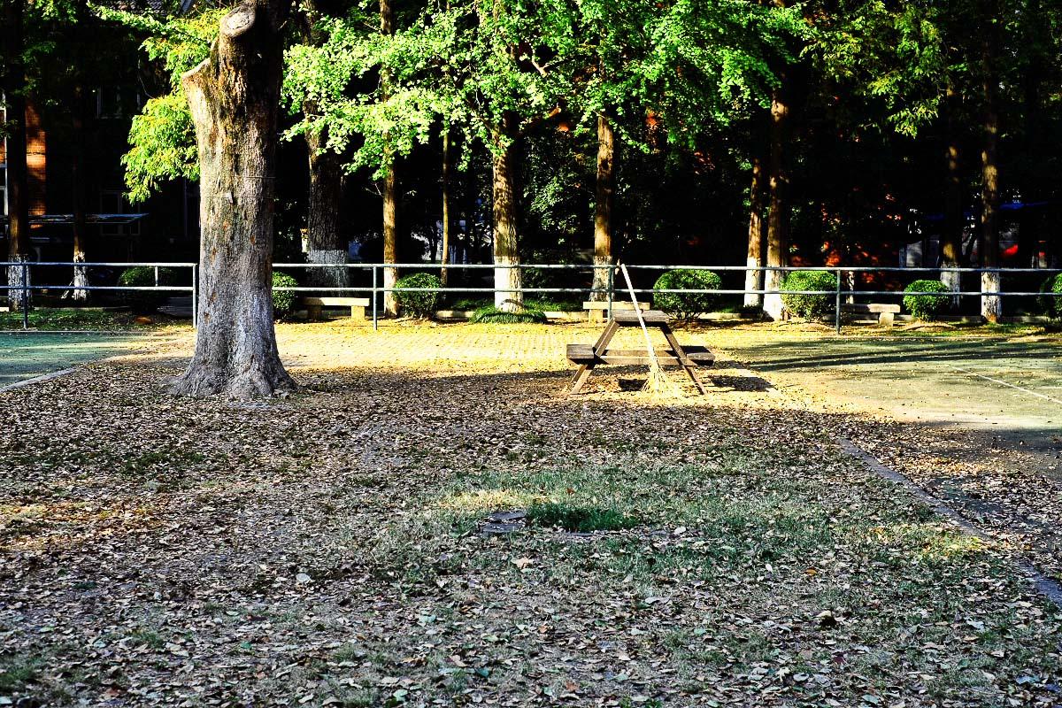 克尔摄影作品 秋天的色彩