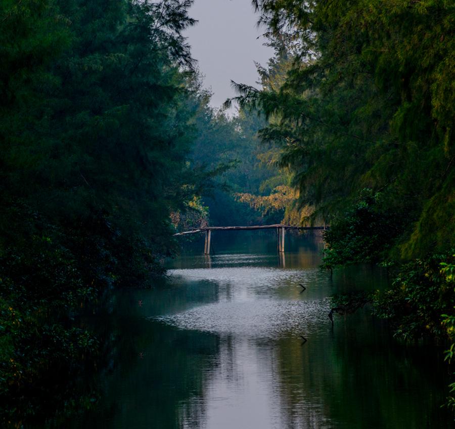 天涯老骥作品:乡间小桥