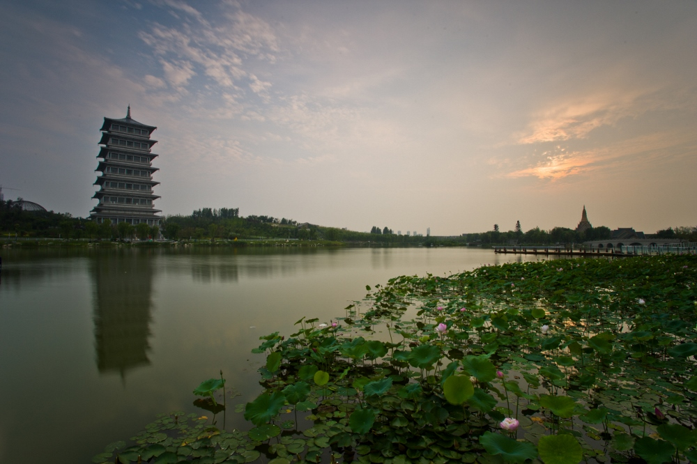 西安老李作品:荷花湖中的长安塔