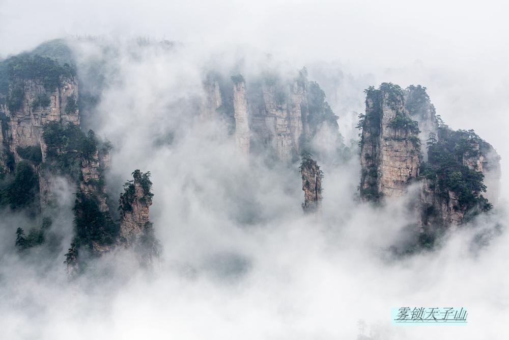 雷子1作品:雾锁天子山