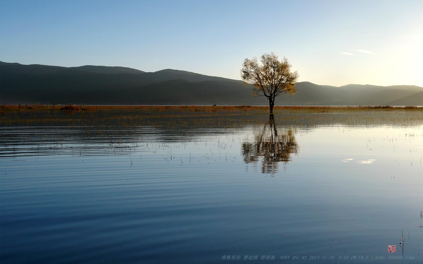 无处归州作品:秋 ·  湖面