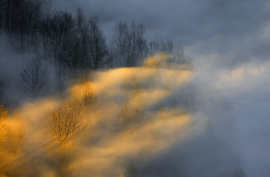 冬天的狼作品:简单的光和影