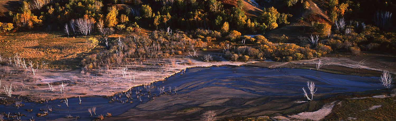 花果山作品:暖水之秋