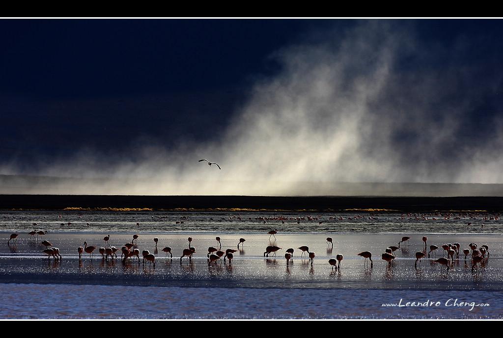 Leandro作品:玻利维亚 烟雾