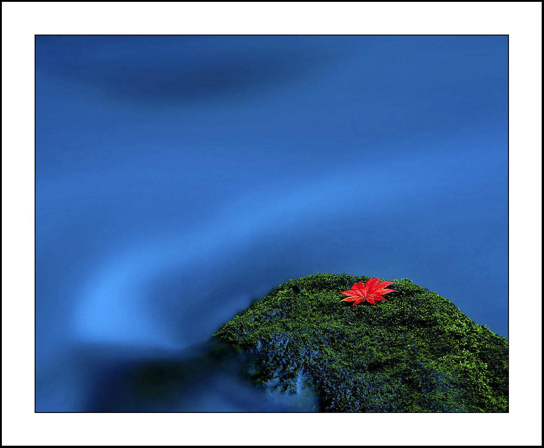 平安A作品:飘零的红叶(三)