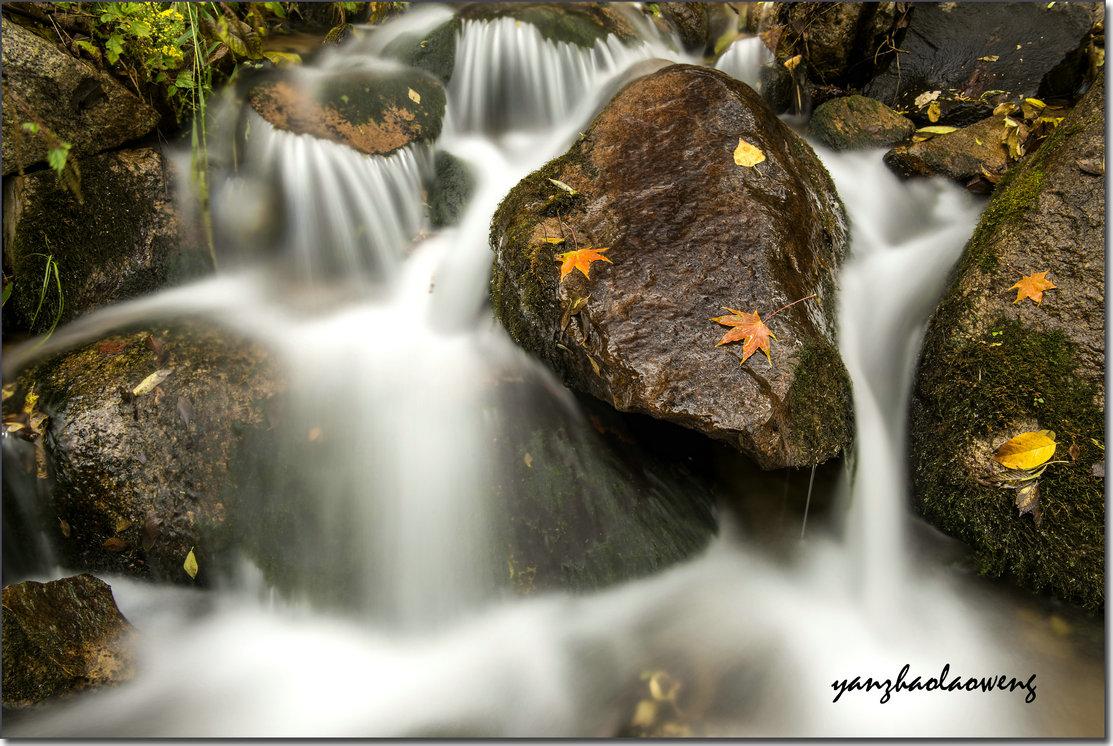 燕赵老翁作品:秋天的小溪
