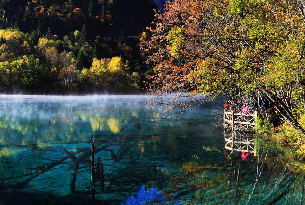 志在巅峰作品:秋的童话