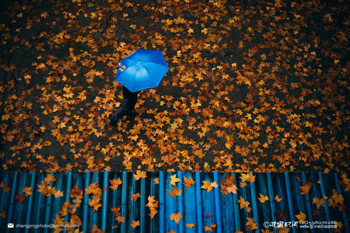 zhangjingphoto作品:秋雨.落叶
