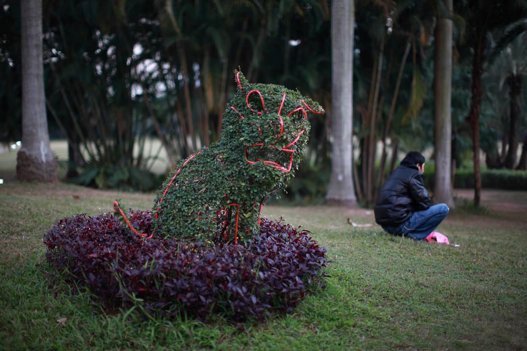 从耗子胖成猪作品:公园里面随手拍
