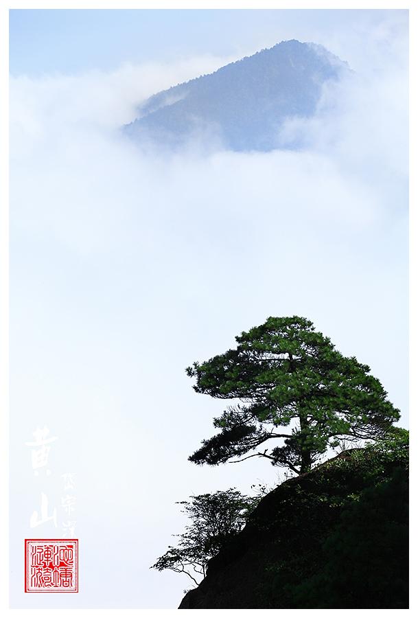 jinyiren作品:黄山风光