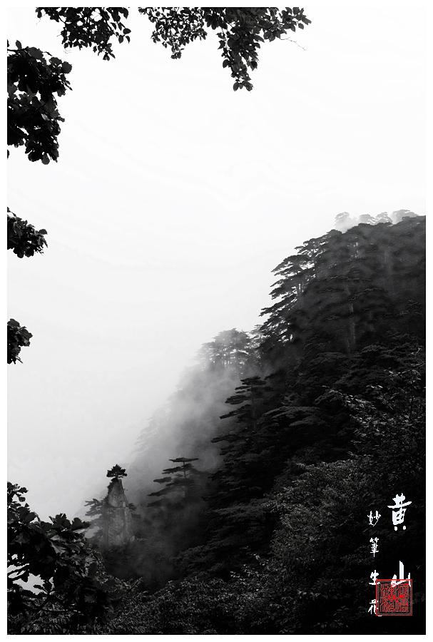 jinyiren作品:妙笔生花