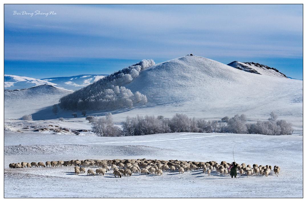 被动声纳作品:冰雪牧羊曲