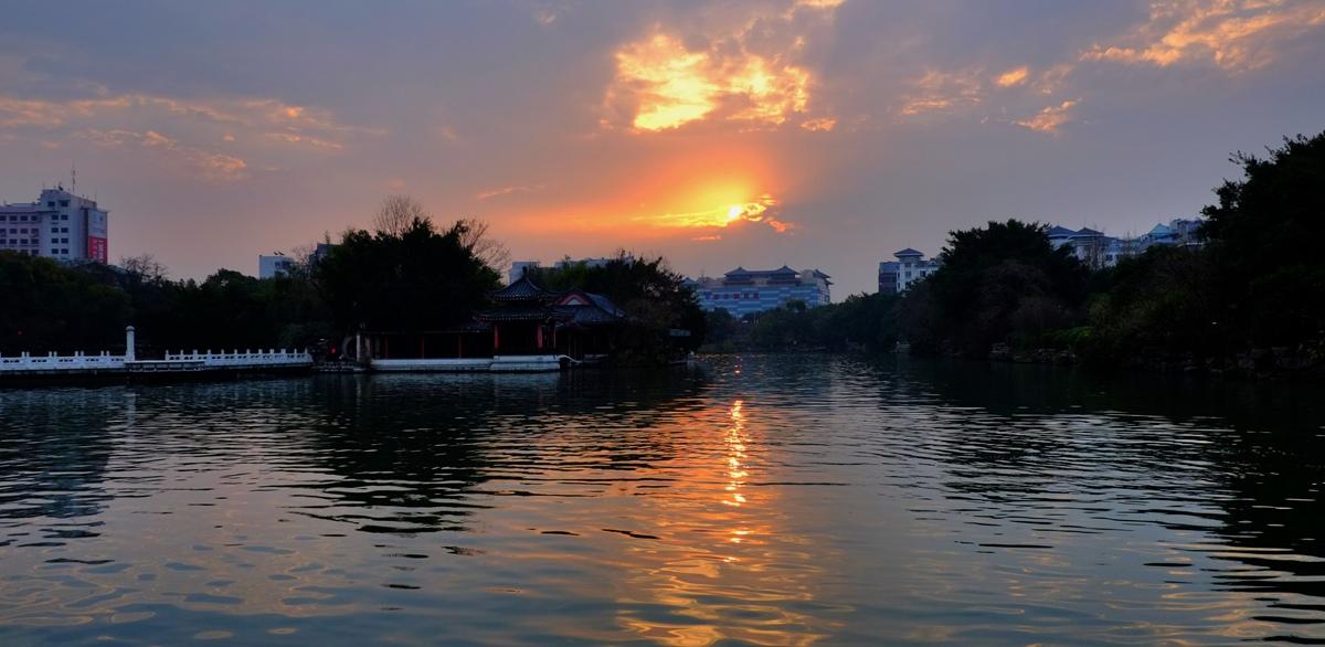 雾之松作品:清晨榕湖