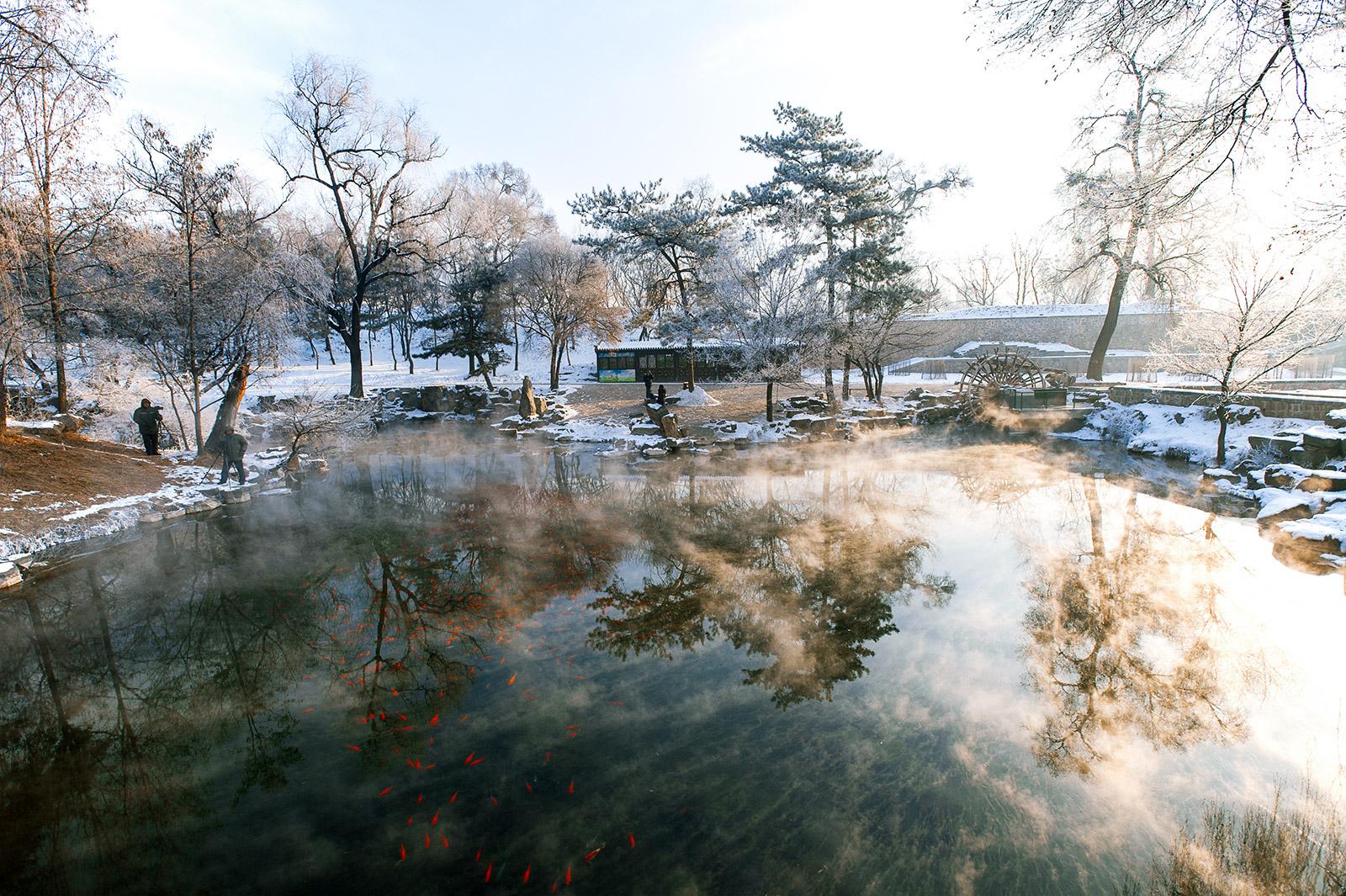 fuguo作品:冬日暖流