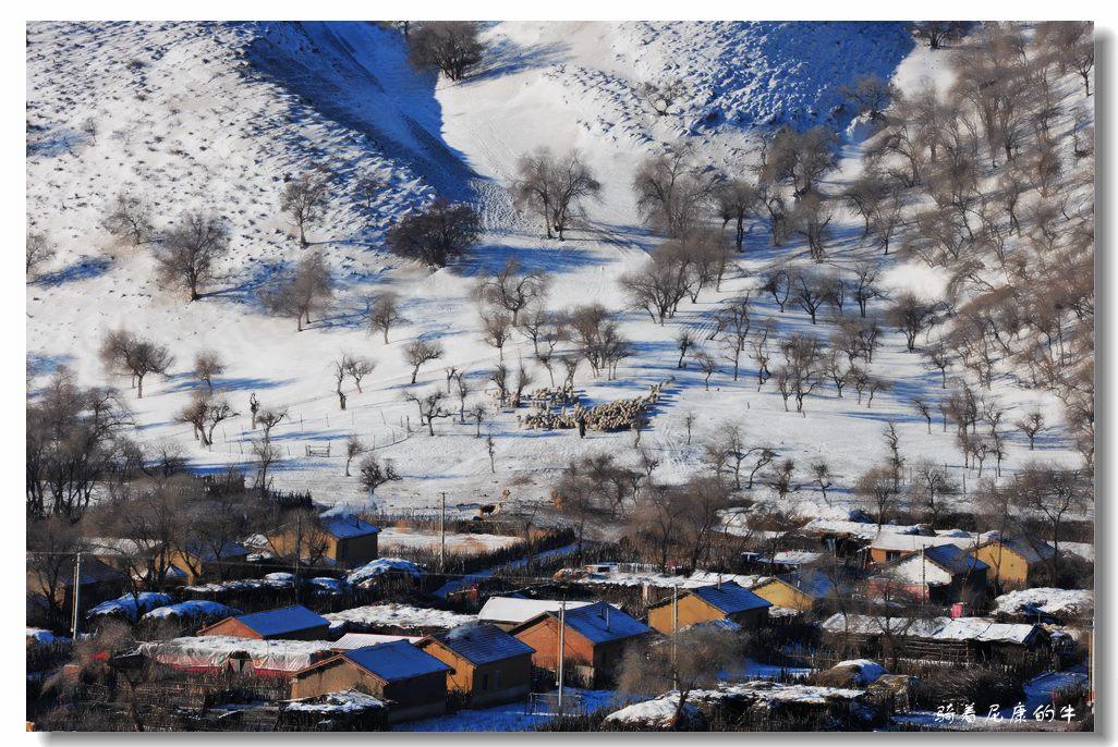 骑着尼康的牛作品:雪后山村