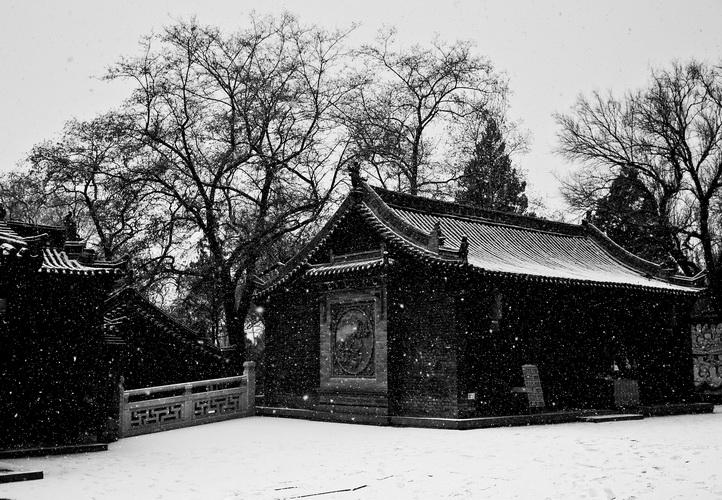 弓长伟作品:雪景