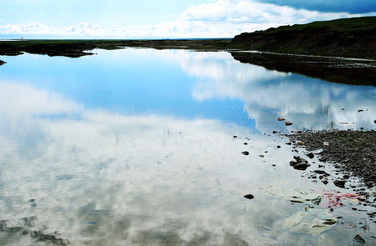 追月8648作品:《青海湖 饮马图》