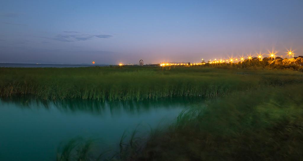云山诗意11-1511作品:太湖月夜静