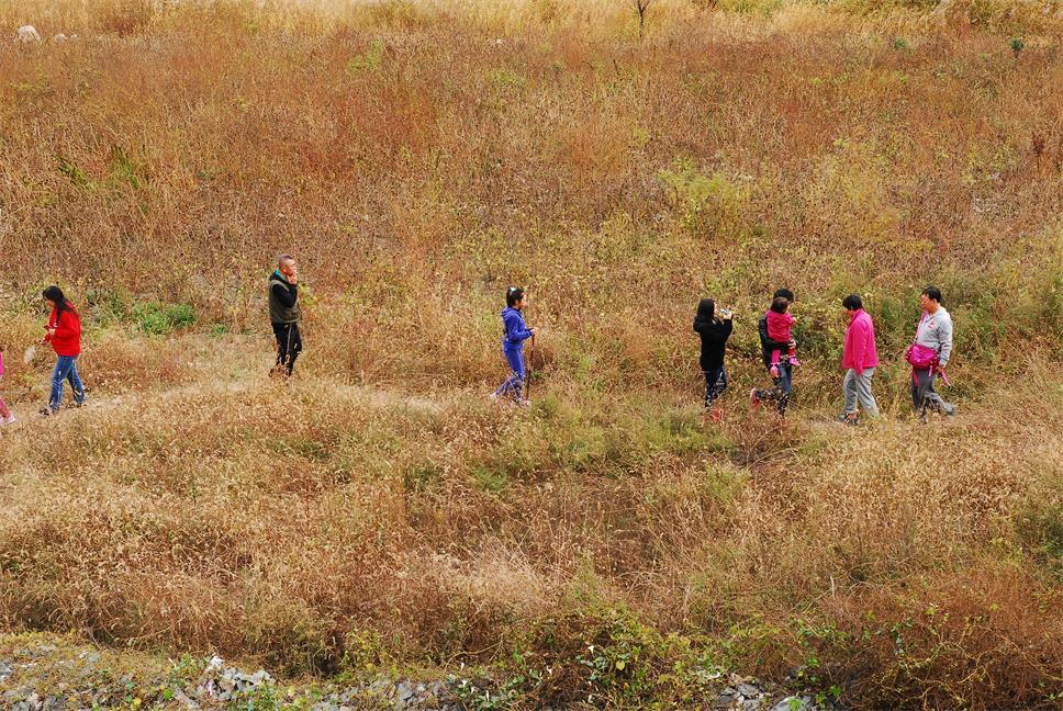 深秋季节草木枯黄,本是无趣的场景,经过游人的介入使无趣的画面变