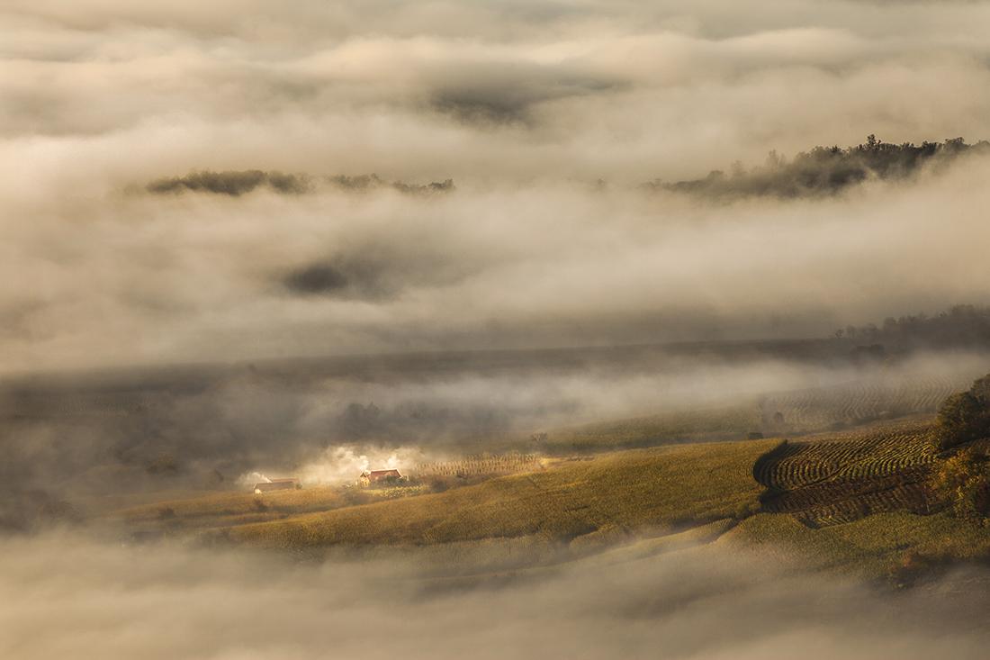 太阳滋味作品:雾中人家