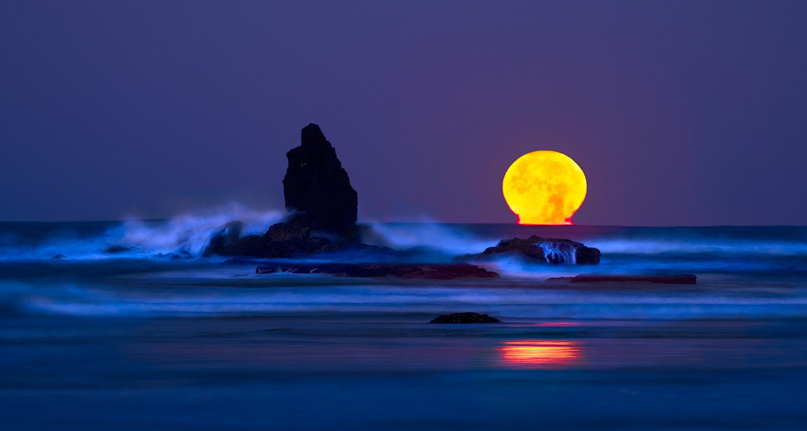 冬天的狼作品:沉月