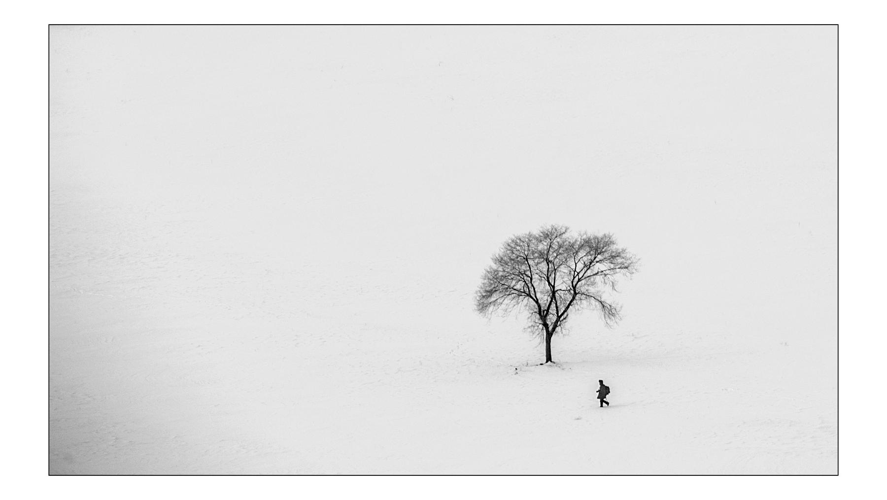 山海原野作品:风雪摄影人