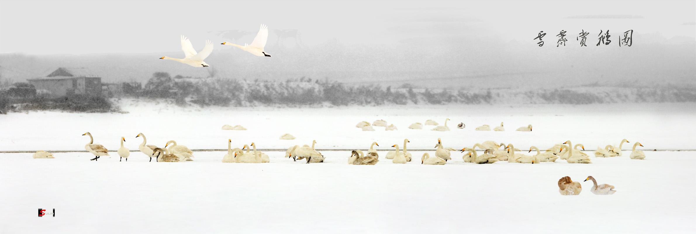 sdsulin作品:雪霁赏鹅图