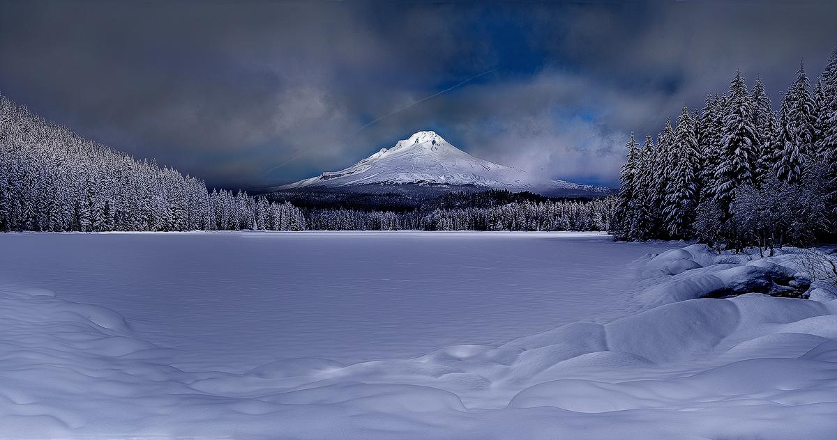 冬天的狼作品:林海雪原
