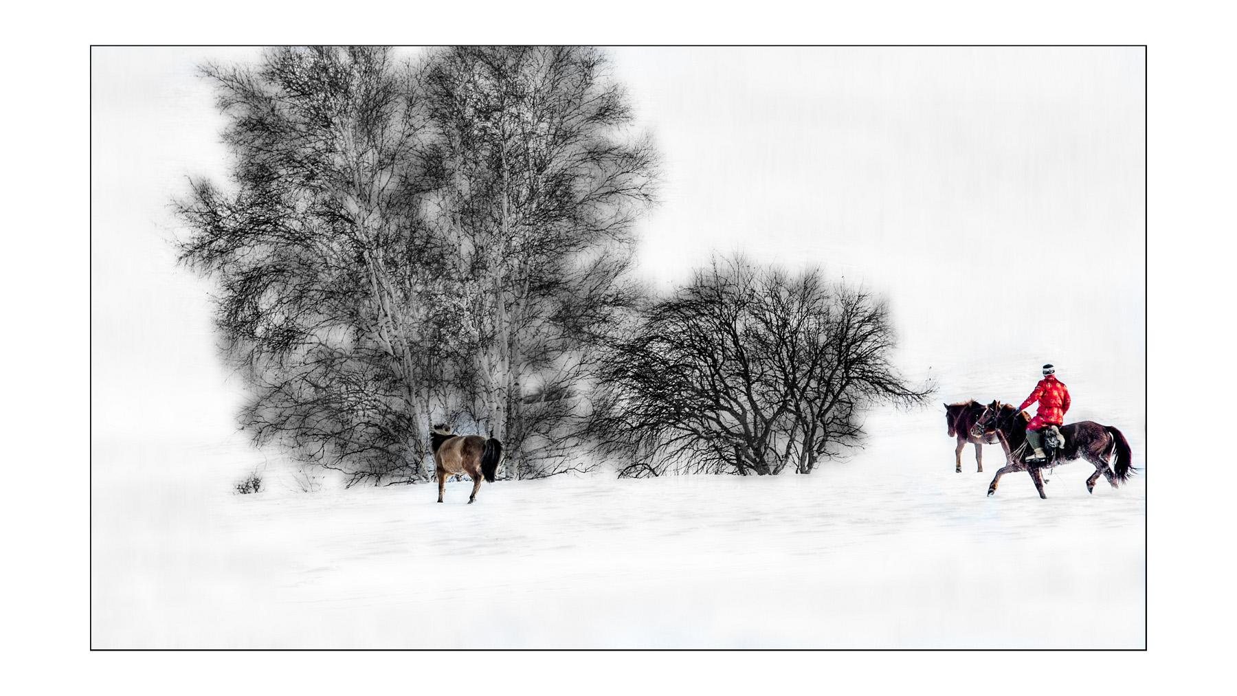 山海原野作品:雪野马倌