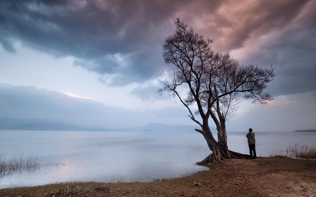 沧海一兵作品:树下的思维者