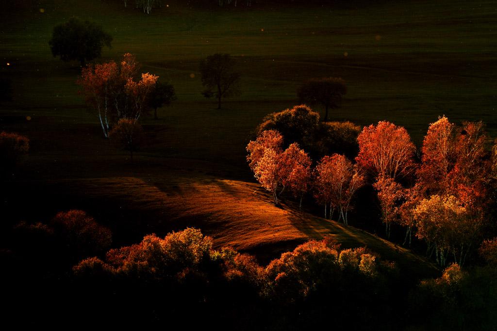 孟辉作品:秋的色彩