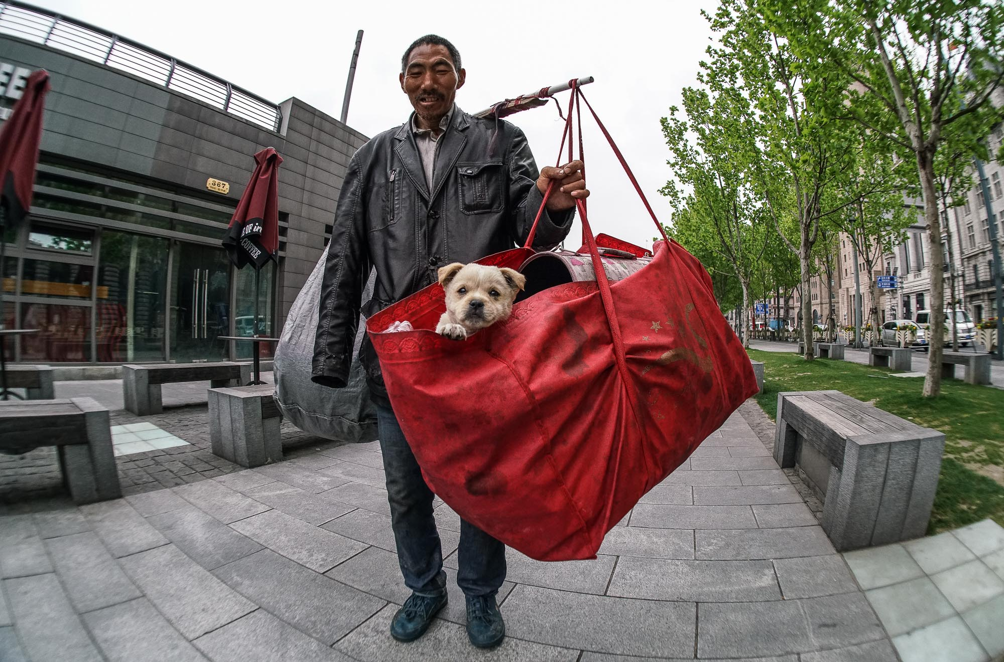 williamweilee作品:独臂流浪汉和他的小狗