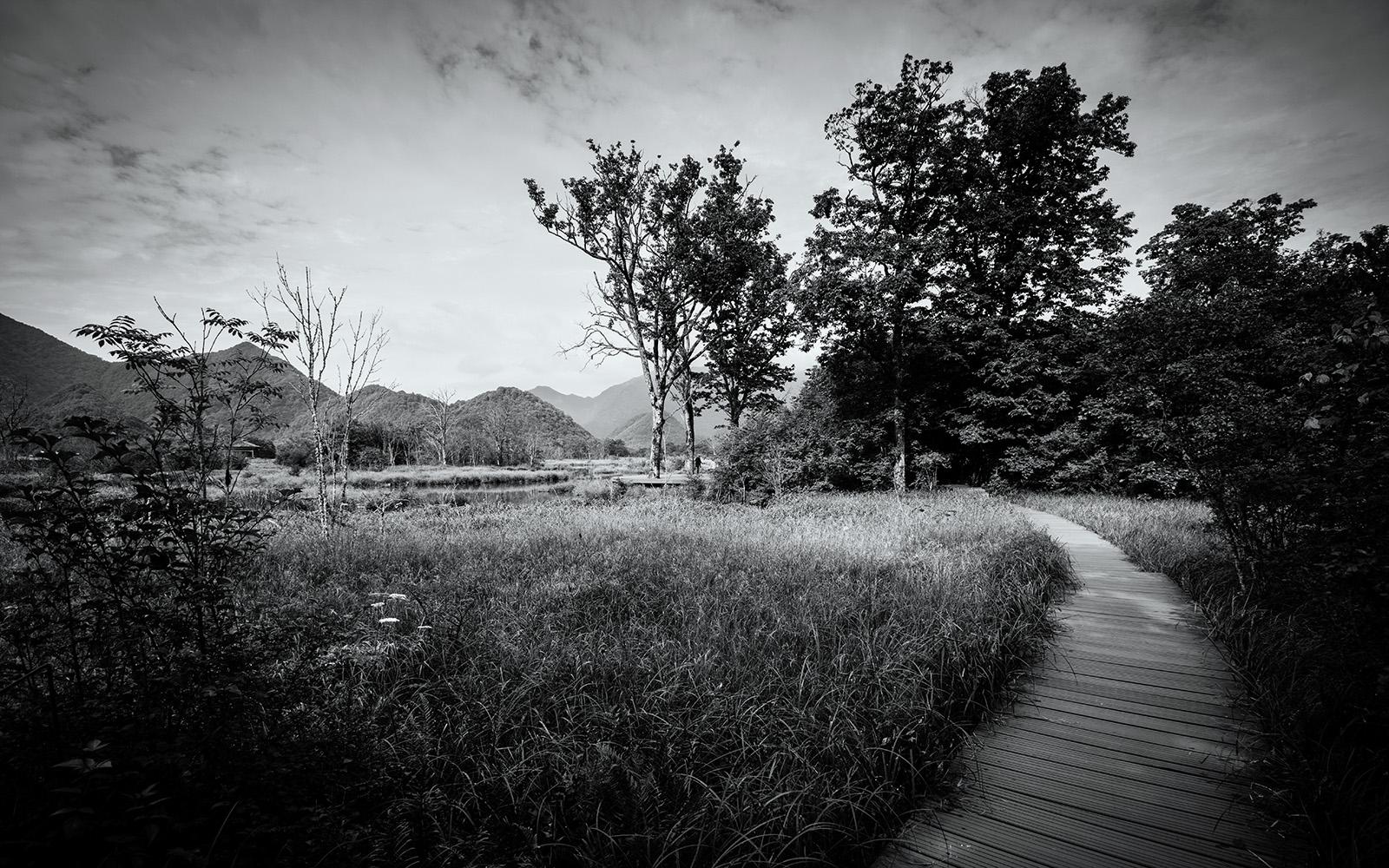 yujiachuan作品:大九湖湿地公园