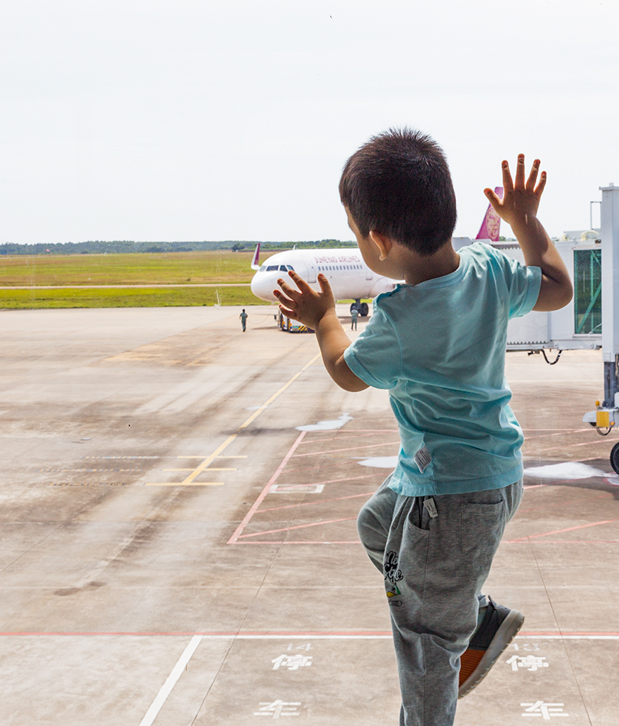 杨柳晓月作品:我想飞