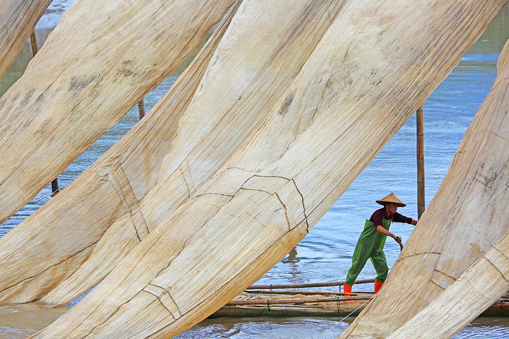 安徽老玉米作品:《晒网》