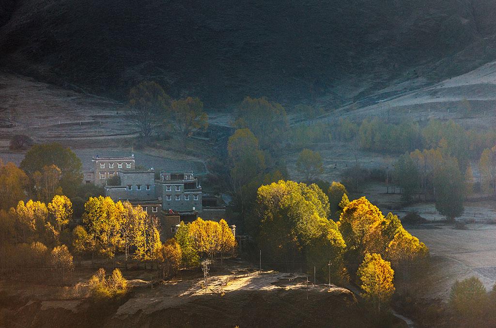 华野四纵作品:秋天的画