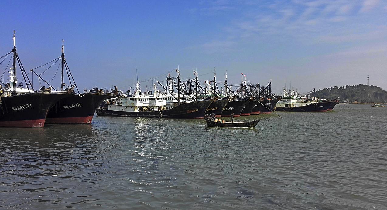 奥巴牛作品:博贺港的渔船
