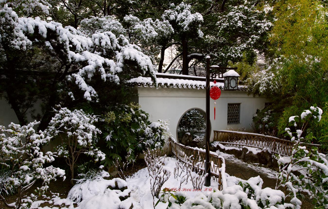 xuliangshey作品:雪韵
