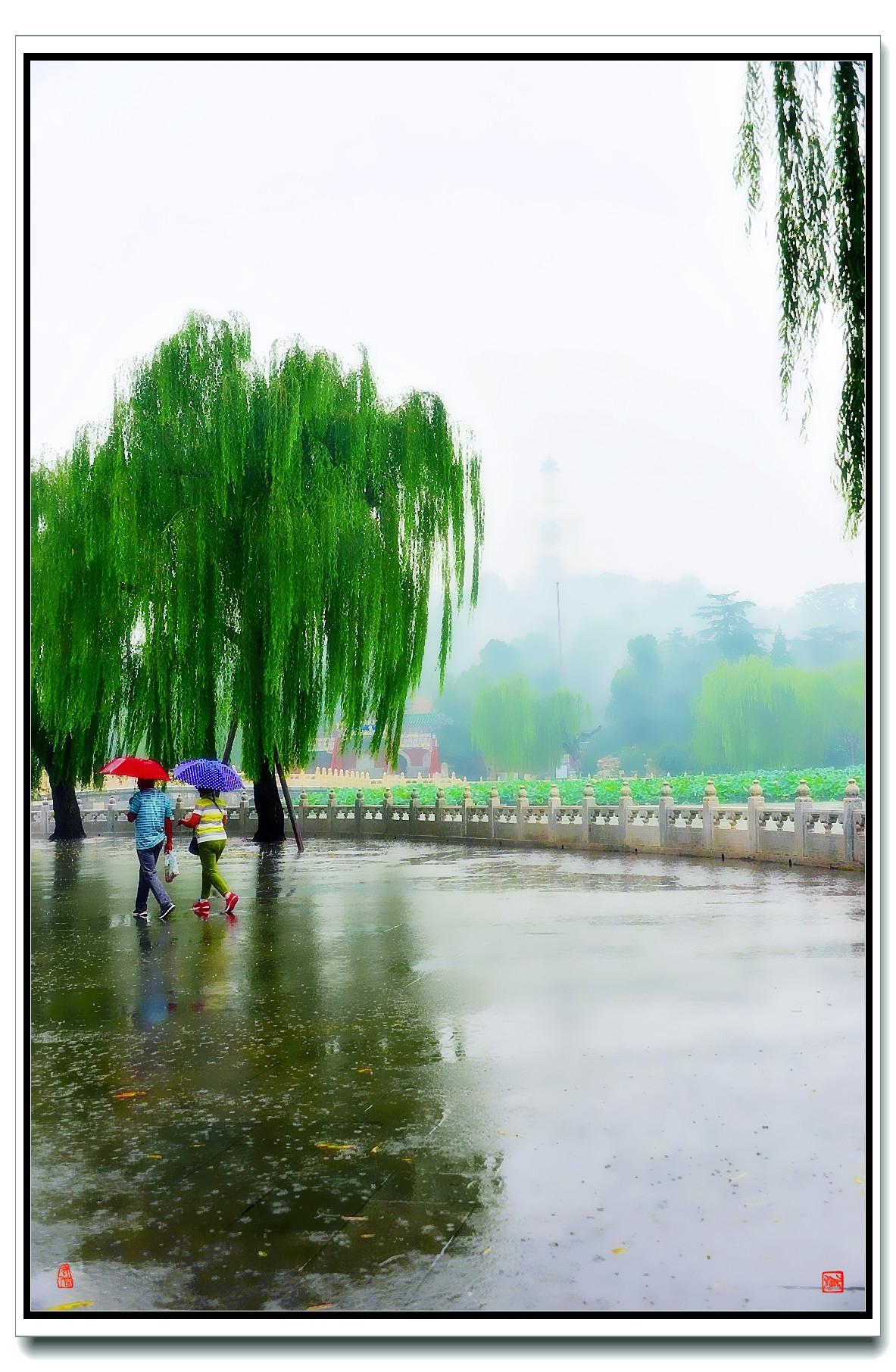 老张喜爱摄影作品:白塔蒙蒙细雨中