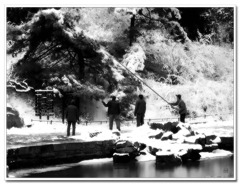 老张喜爱摄影作品:北京公园里打雪图